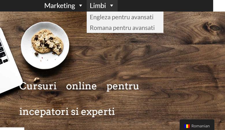 Translate-WordPress-Menu