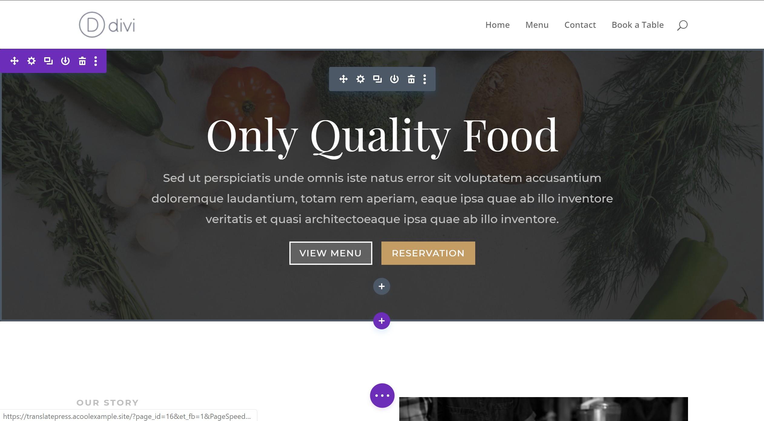 Example of Divi site