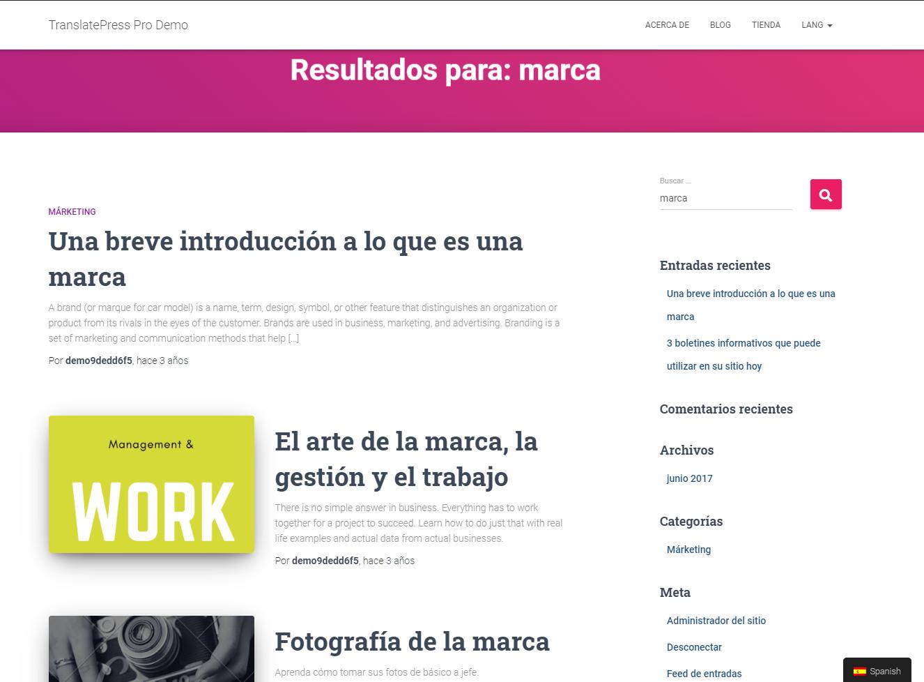 Multilingual WordPress Search results using TranslatePress
