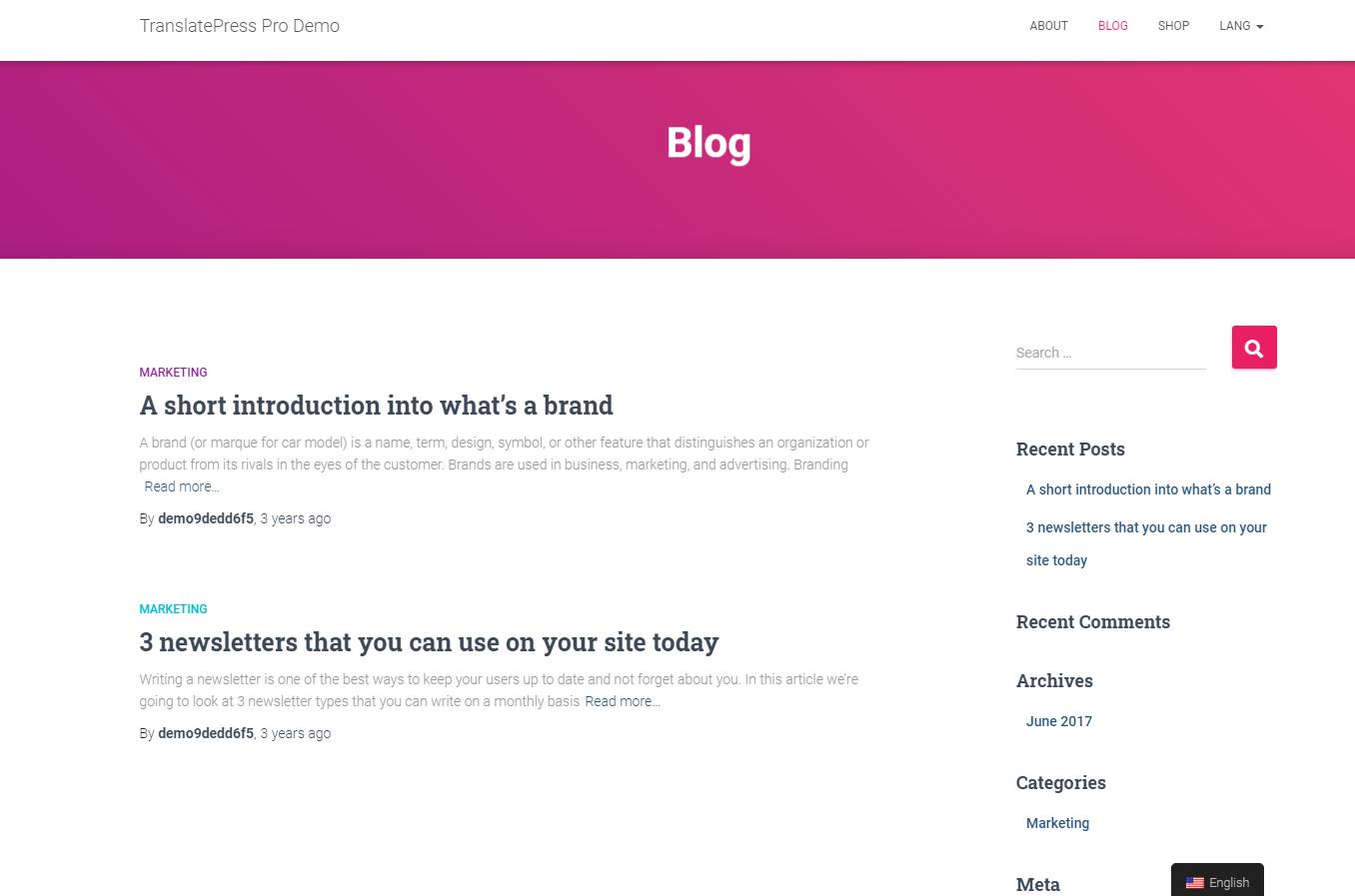 Adding a WordPress search form