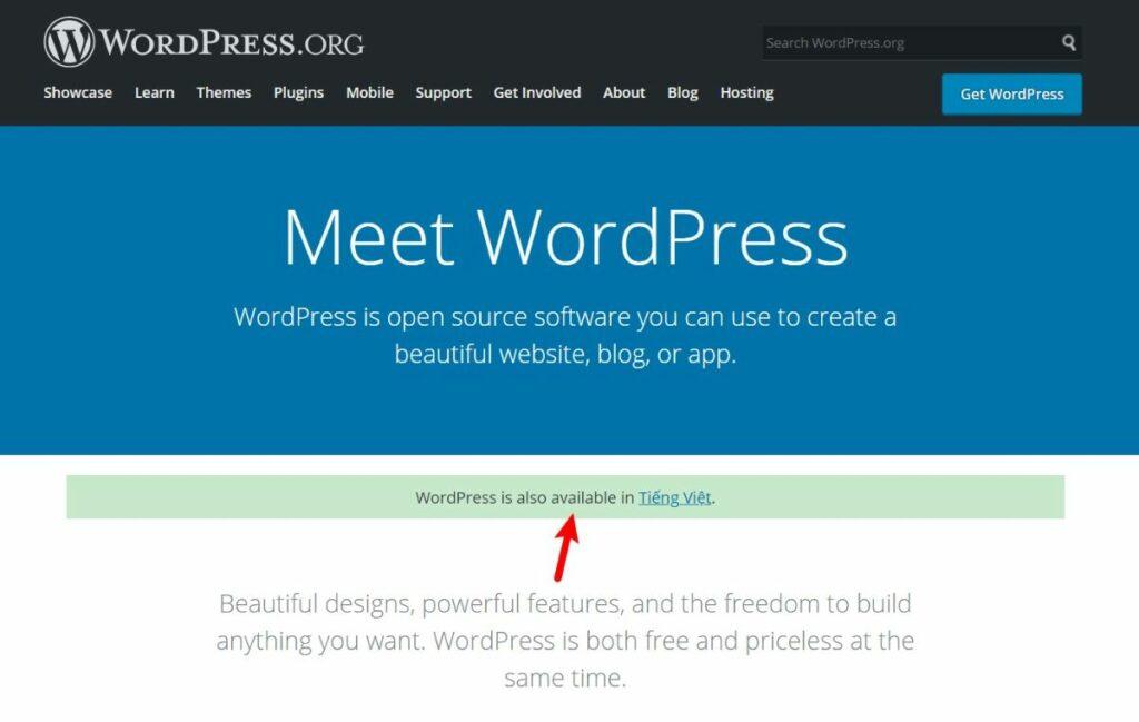 WordPress.org multi language website example