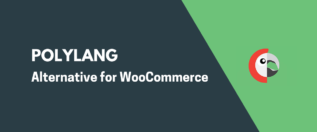 Polylang WooCommerce Alternative
